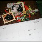 Der Kaninin – Kalender 2009