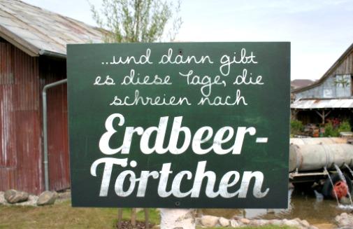 erdbeerhof07
