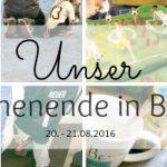 Unser WIB am 20./21.08. mit Fußballparties und Grillfreuden