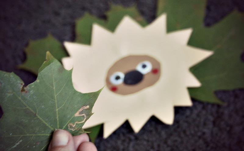 Basteln Mit Kindern Ein Igel Versteckt Sich Im Herbstlaub