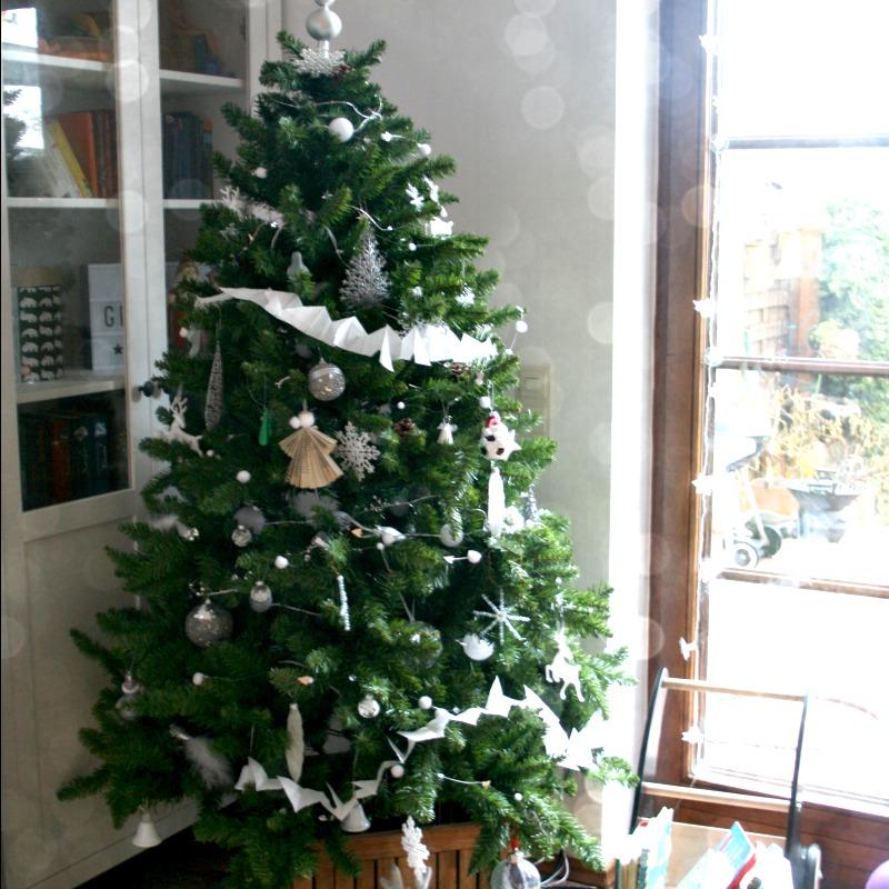 mmi warum jedes jahr unser weihnachtsbaum schon so fr h. Black Bedroom Furniture Sets. Home Design Ideas