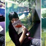[Mmi] Eine Buchvorstellung im Aquarium