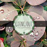 Wir lassen uns vom Sommerregen nicht die Laune verderben #goingoutblogger