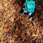 #Freitags5 – 5 Tage 5 Fotos im Oktober #03