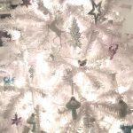 Unser (Advents-) #WIB am 02./03.12.2017 mit einem weißen Baum