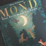 Mond: Eine Reise durch die Nacht von Britta Teckentrup #Rezension