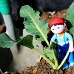 HABA Little Friends Bilder – und Vorlesebücher #Rezension #Gewinnspiel