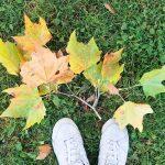 Quality – Time, Bloggerleben und bunte Stoffe – Unser #WIB am 13./14.10.2018