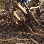 Über Stock und Stein – Der Spielplatz der Natur