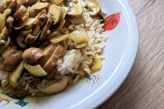 Pilz Curry