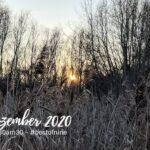 #30am30 und unsere #bestofnine im Dezember 2020