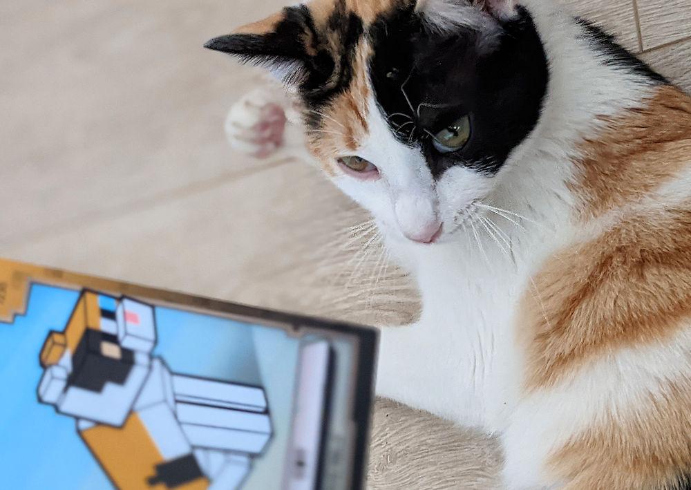 Minecraft Katze