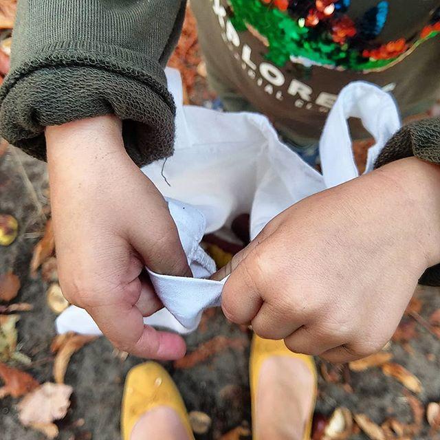 Werbung wg Markenerkennung - Seid ihr diesen #Herbst eigentlich schon #Kastanien sammeln gewesen? Oder #Eicheln, Nüsse, #Tannenzapfen und bunte Blätter? Wir haben uns heute einen herbstlichen #Spaziergang nach einem anstrengenden Vormittag gegönnt und reichlich #Schätze mit nach Hause genommen. Mal sehen, was wir daraus zaubern...