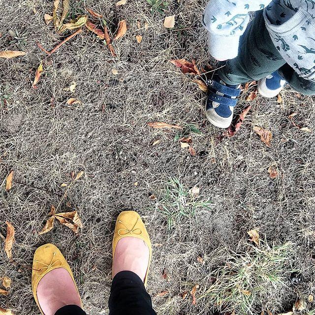 Als ob wird nicht schön genug #Kastanien hätten 😅  #lebenmitkindern